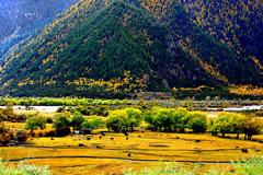 拉萨-纳木错-林芝-雅鲁藏布大峡谷6晚7日游