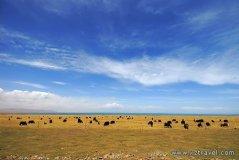 申扎自然保护区