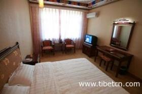 西藏燃木齐大酒店